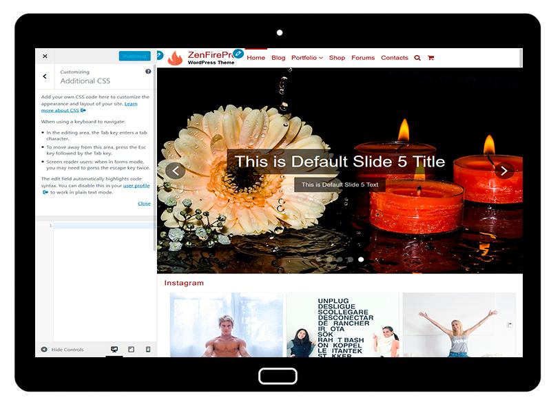 ZenFirePro Customizing Additional CSS