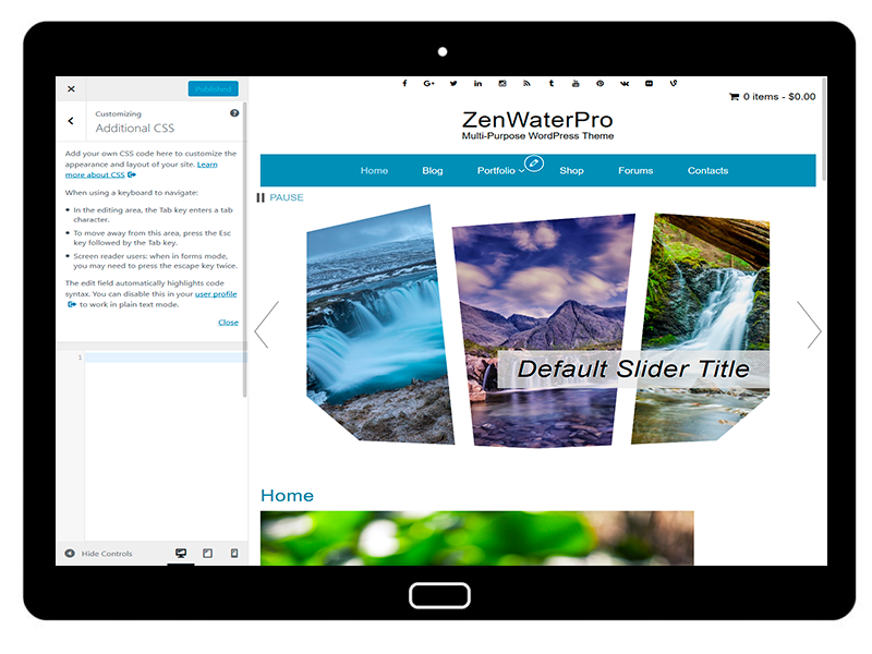 ZenWaterPro Customizing AdditionalCSS