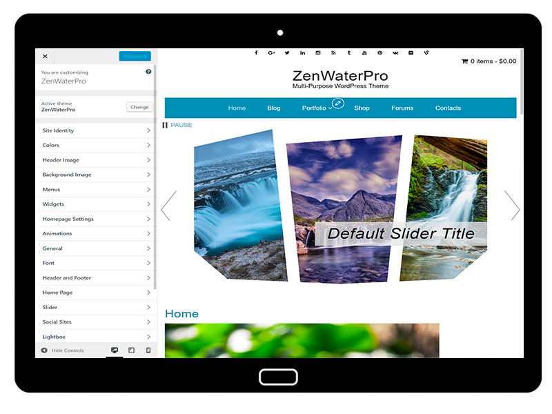 ZenWaterPro Customizing All Options
