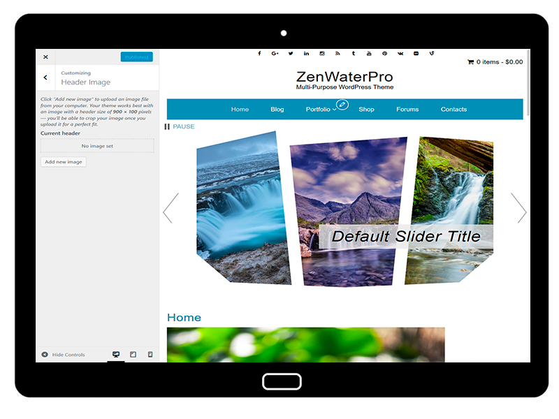 ZenWaterPro Customizing Header Image