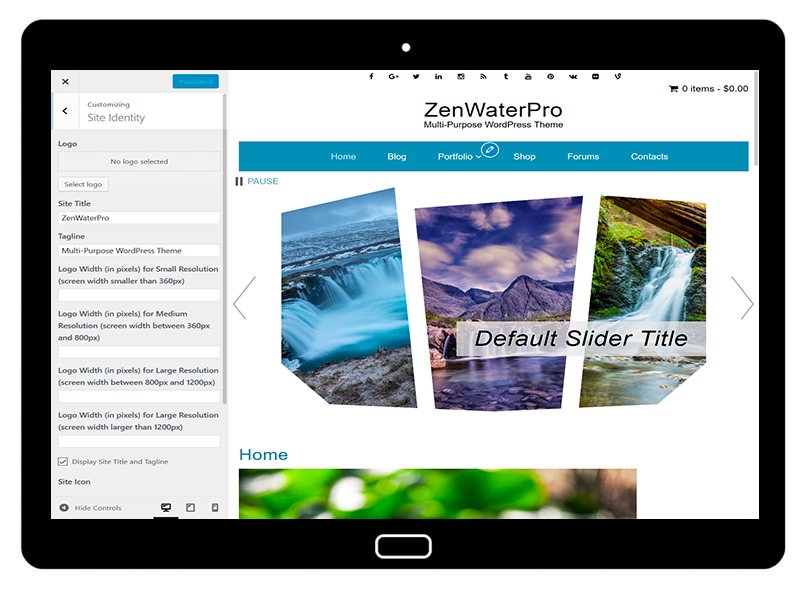 ZenWaterPro Customizing Site Identity