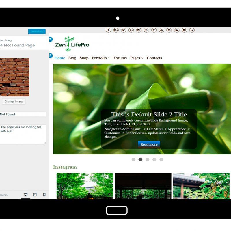 premium-wordpress-theme-zenlifepro-customize-404-not-found-page