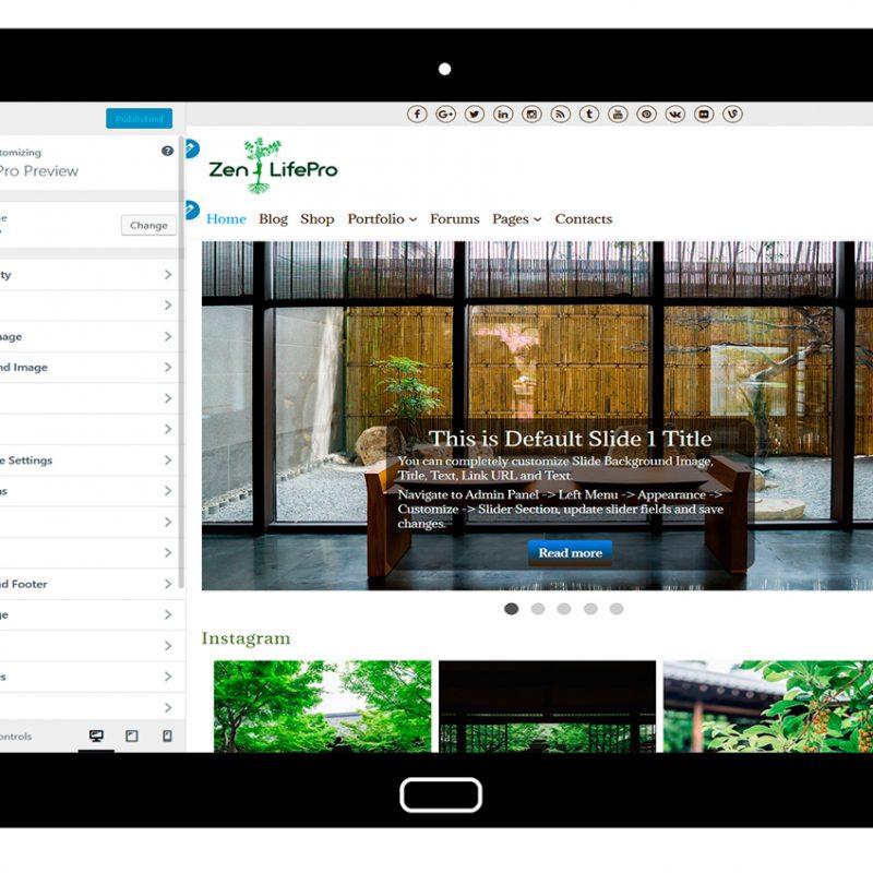 premium-wordpress-theme-zenlifepro-customize-all-options
