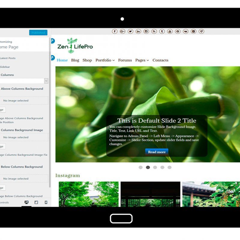 premium-wordpress-theme-zenlifepro-customize-home-page