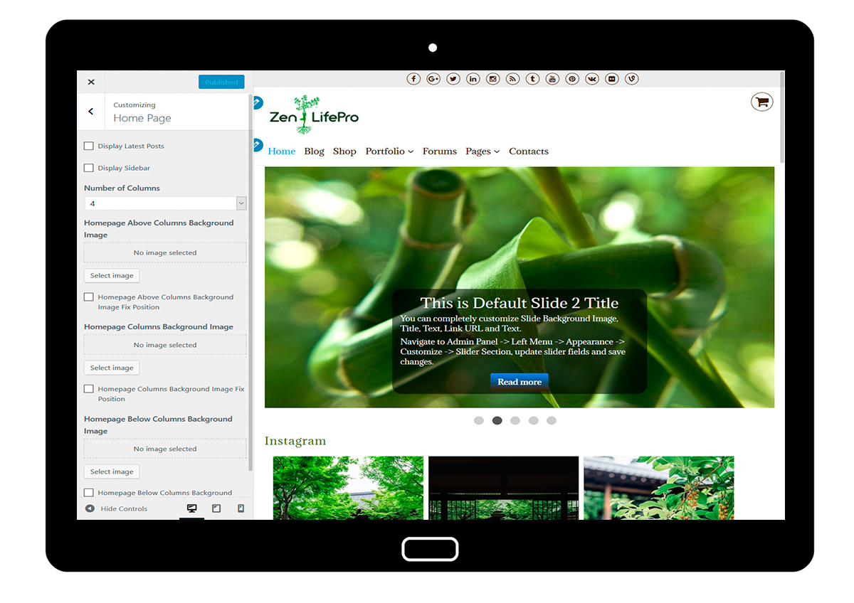 premium-wordpress-theme-zenlifepro-customize-home-page