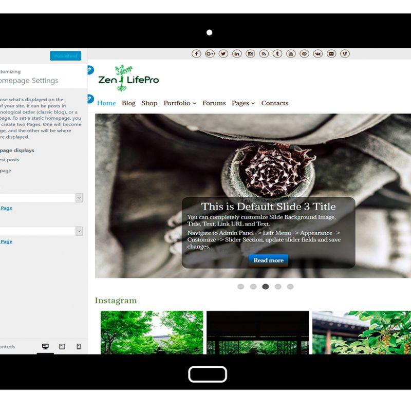 premium-wordpress-theme-zenlifepro-customize-homepage-settings