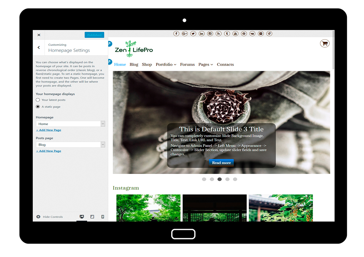 premium-wordpress-theme-zenlifepro-customize-homepage-settings