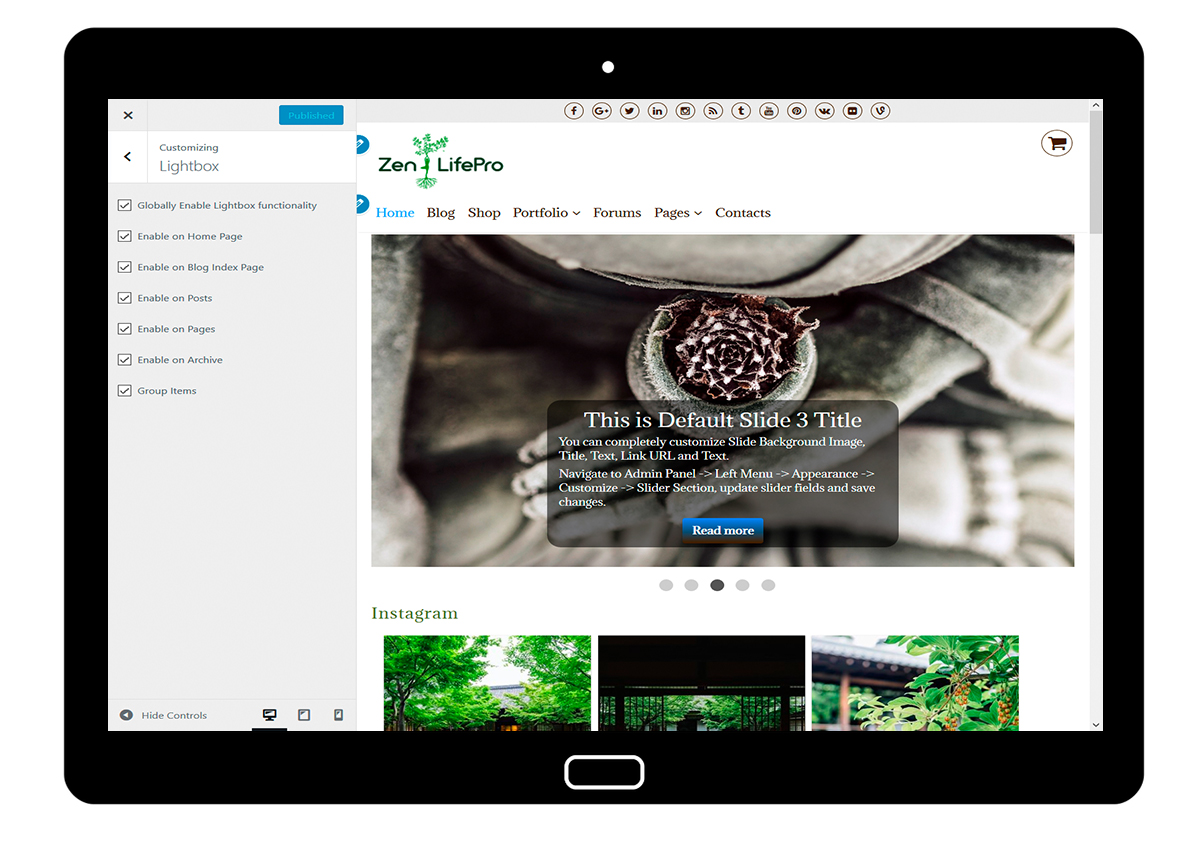premium-wordpress-theme-zenlifepro-customize-lightbox