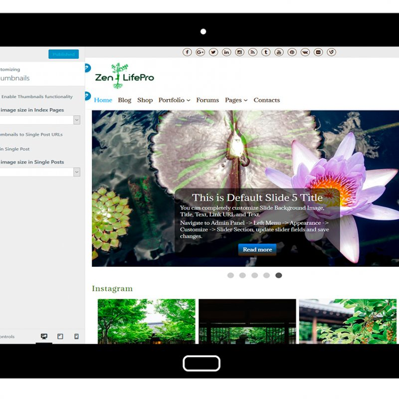 premium-wordpress-theme-zenlifepro-customize-thumbnails