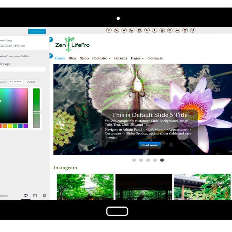 premium-wordpress-theme-zenlifepro-customize-woocommerce1